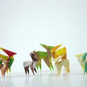 Crafts and Origami