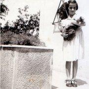 Fay Koubouri