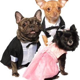Posh Pet Glamour Boutique