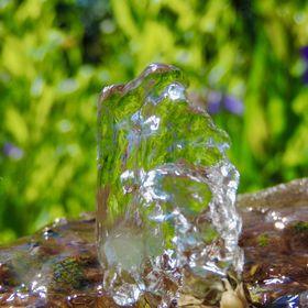 Gartenphilosophie Gartenblog