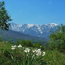 Apriltsi Bulgaria