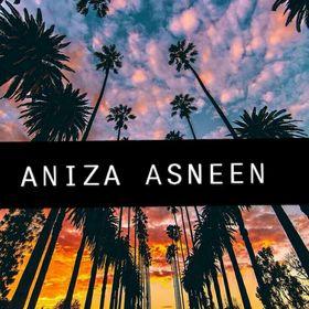 Aniza Asneen