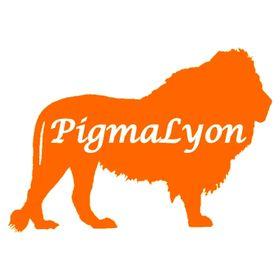 PIGMALYON MARKETING