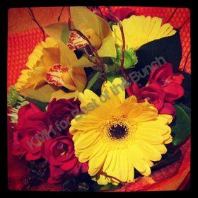 Best of the Bunch Florist Wellington