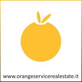 Orange Service Real Estate
