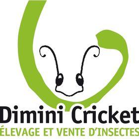 Dimini Cricket