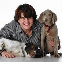 Halfpenny Sanchez -Animal&Travel image maker for home/office styling