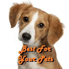 Best For Your Pets