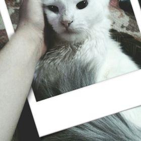 Katica Veres