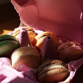 In Love with Macarons