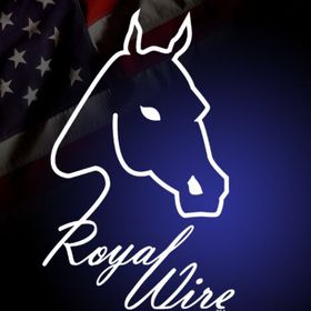 Royal Wire Equine