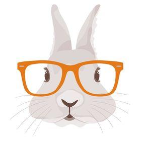Rabbit Ideas