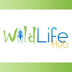 Wild Life Hub