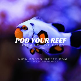 Pod Your Reef