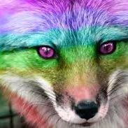 rainbowfoxy38
