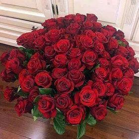 Craft amigo Forever Flowerz romántico Rosas Kit Makes 35 Flores