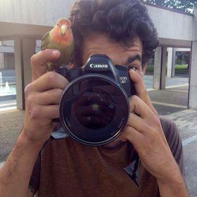 Renato Lainho