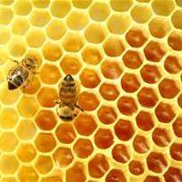 Mel's honey infusions