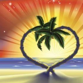 palmtree passion.com