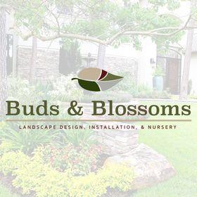 Buds & Blossoms Garden Center