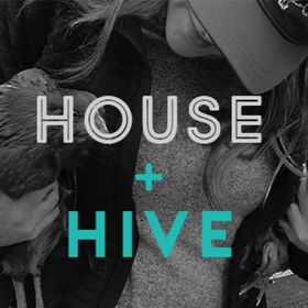 The House + Hive