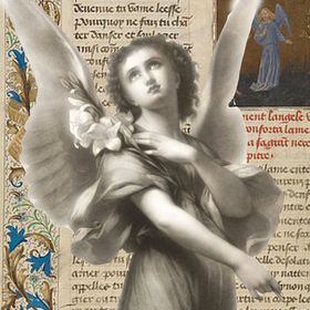 The Seventh Angel Book Website