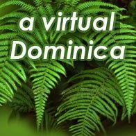 a Virtual Dominica