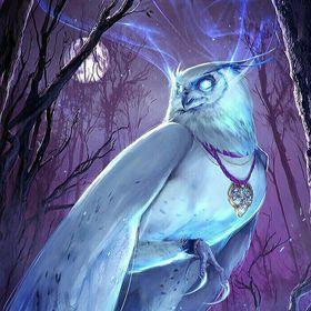Equinox Owl
