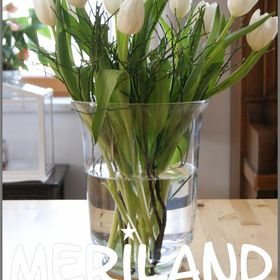 Meriland´s Cottage - Onlineshop