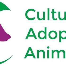 Cultura y Adopción Animalista