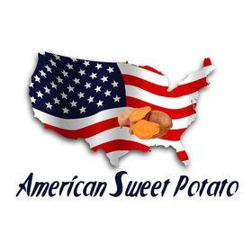 American Sweet Potato