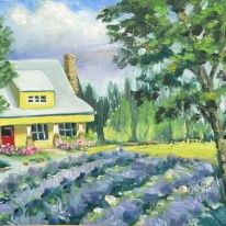 Sunshine Lavender Farm