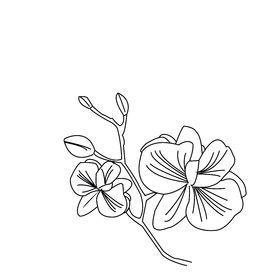 Emilie Dubot - Bijoux romantique japonisant