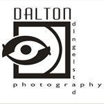 Dalton Dingelstad