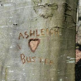 Ashleigh Lamb