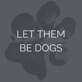 Let Them Be Dogs