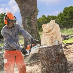 Eagle Ridge Chainsaw Carvings