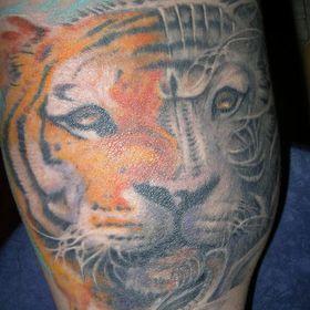 Katinka Tetováltlány