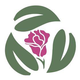 Repurposed Rose