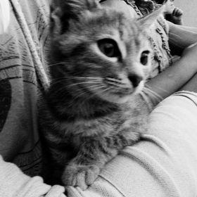 Shaun Black&White