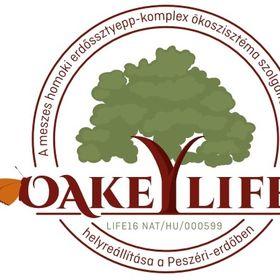 OAKEYLIFE Peszéri-erdő
