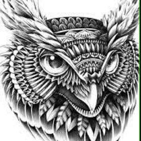 Owl moon moon0293 no pinterest owl moon fandeluxe Choice Image