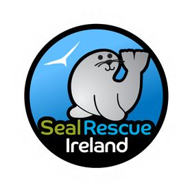 Seal Rescue Ireland | Cute Seal Pups & Gifts That Give Back