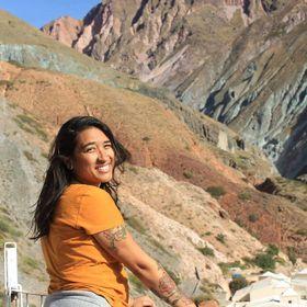 Travel Blog Uma Sul Americana