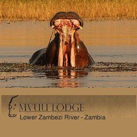Mvuu Lodge