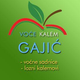 Rasadnik Gajić