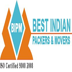 Best Indian Packers