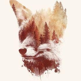 FoxDDorina