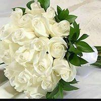 Aseel Hafidh