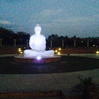 Anu Vinod Sharma